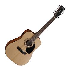 גיטרה אקוסטית 12 מיתרים CORT AD810-12