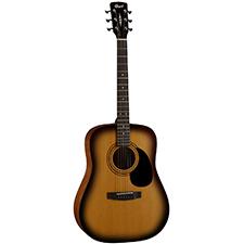 גיטרה אקוסטית CORT AD810 SB