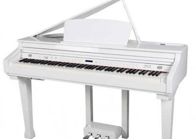 פסנתר כנף חשמלי, לבן Ringway GDP1020